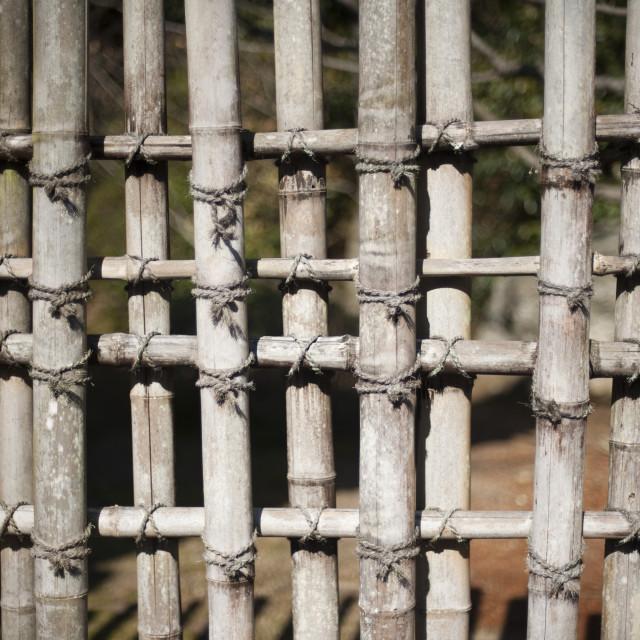 """Bamboo trellis"" stock image"
