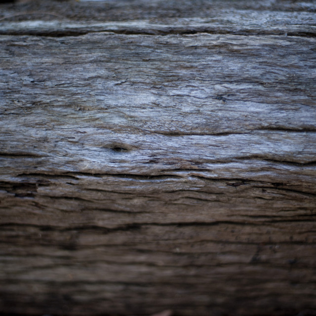 """Background of old cracked wood"" stock image"
