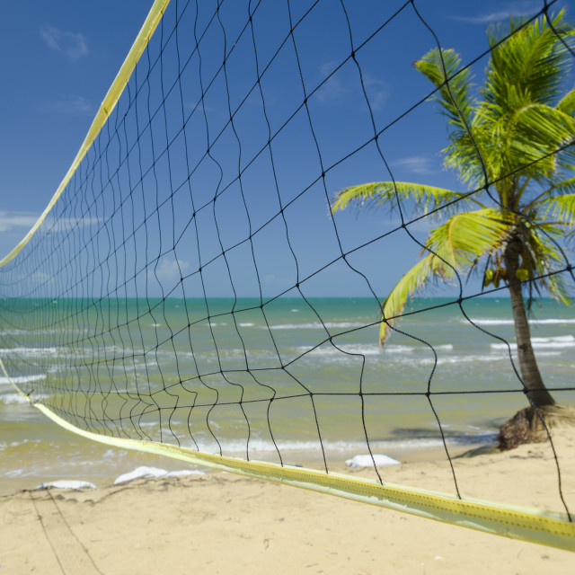 """Ready for some tropical volleyball"" stock image"