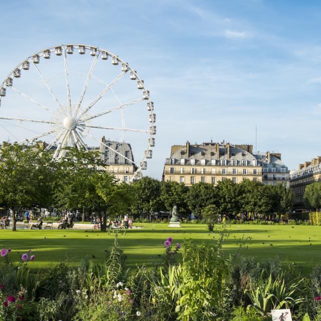 """""""Summer in Paris"""" stock image"""