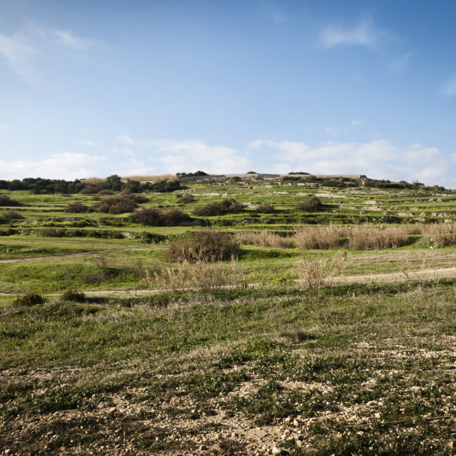 """Maltese Countryside"" stock image"