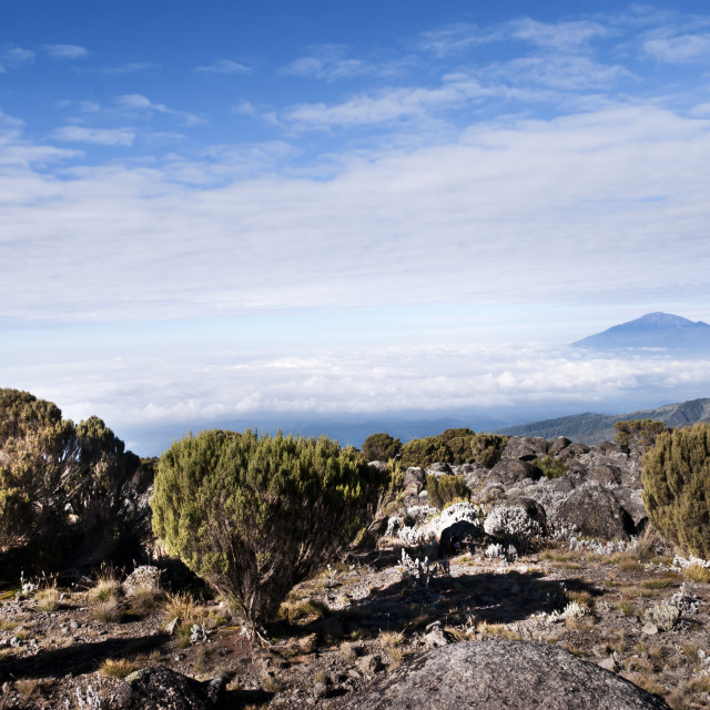 """View from Mt Kilimanjaro looking toward Mount Meru"" stock image"