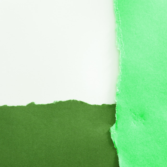 """green torn border"" stock image"