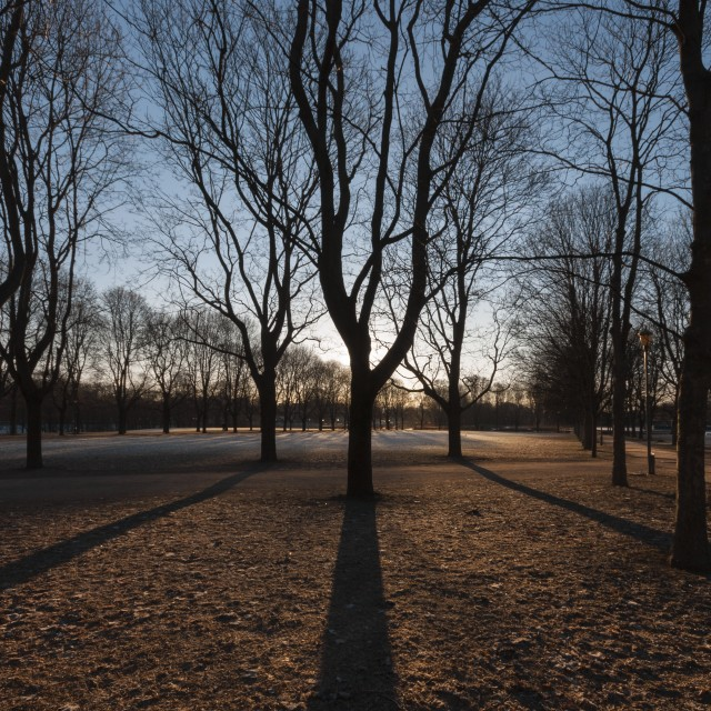 """Late afternoon in an Oslo park"" stock image"