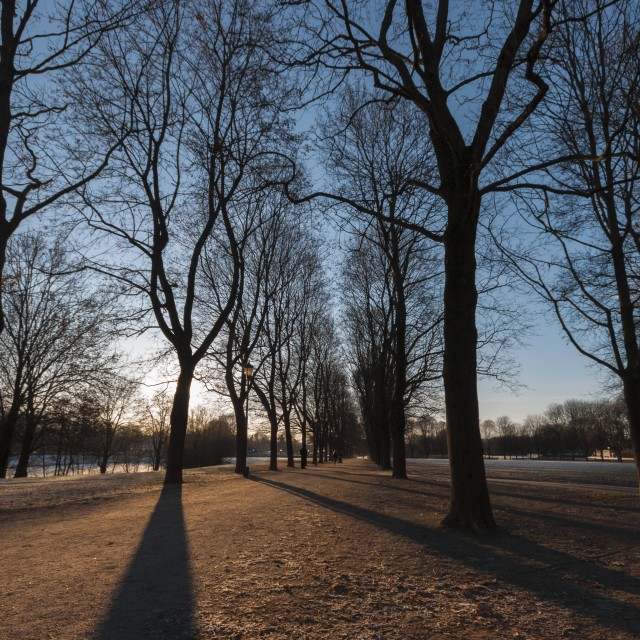 """Late afternoon in an Oslo park 002"" stock image"