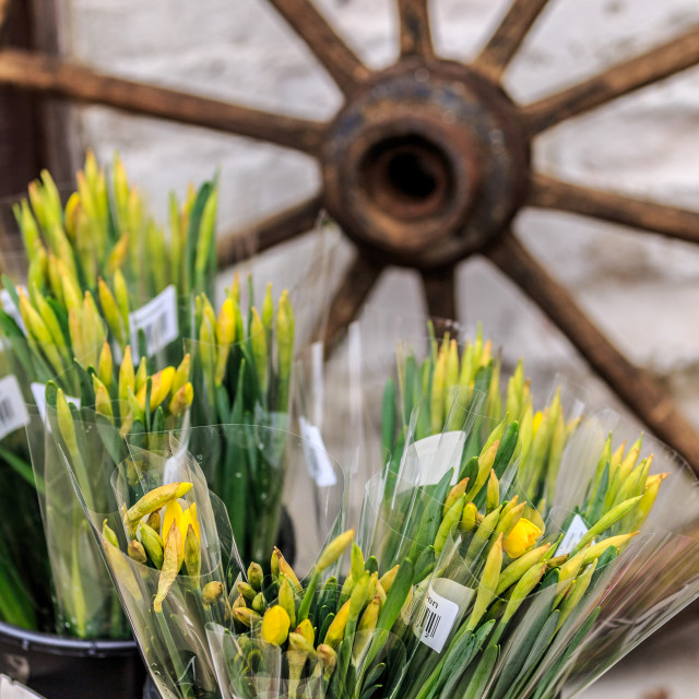 """""""Flowers at a market in Prague"""" stock image"""
