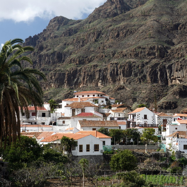 """EUROPE CANARY ISLAND GRAN CANARY"" stock image"