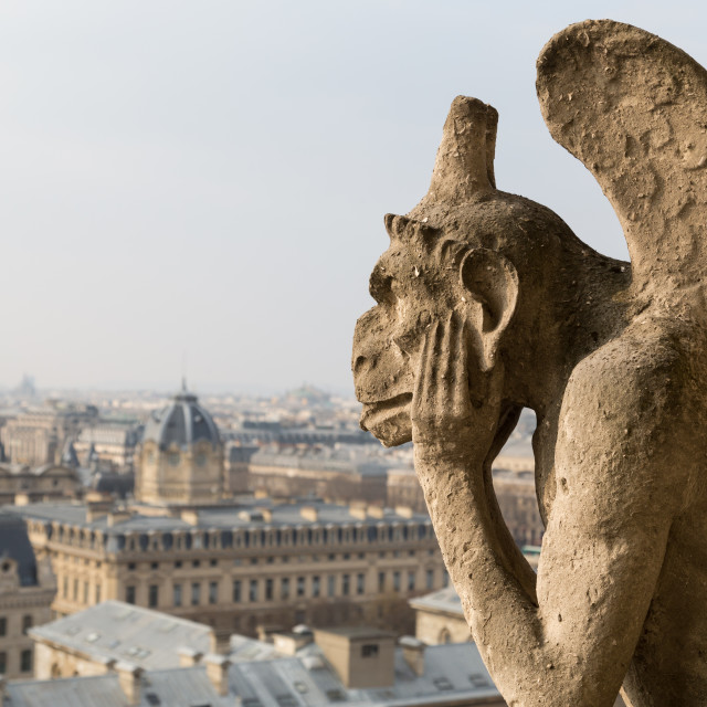 """""""Notre Dame Cathedral, Paris"""" stock image"""