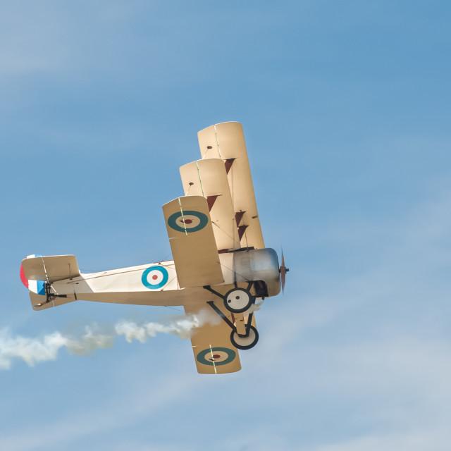 """""""WW1 triplane"""" stock image"""