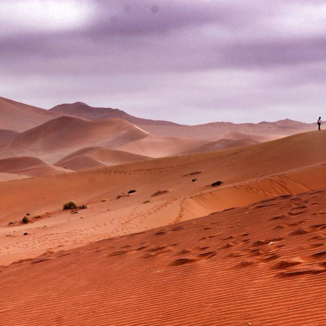 """""""soussevlei desert"""" stock image"""