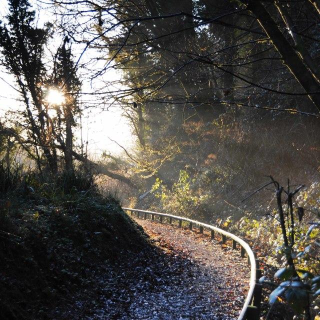 """""""Misty morning at Cwm Du Glen in Pontardawe"""" stock image"""