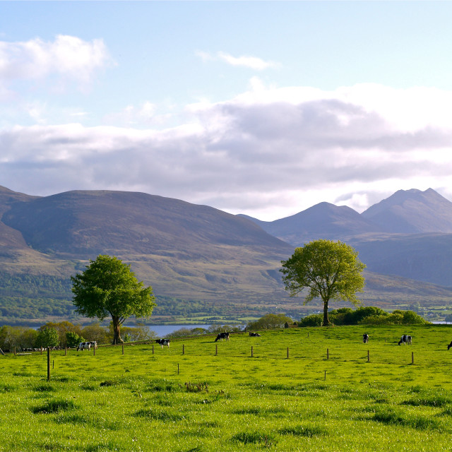 """County Kerry"" stock image"