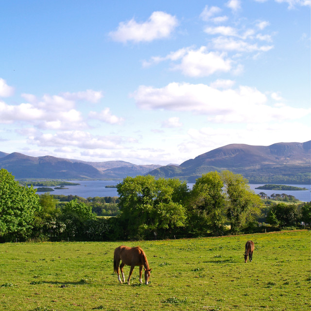"""Aghadoe Hill 2"" stock image"