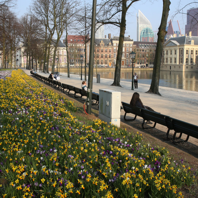 """Spring in The Hague"" stock image"