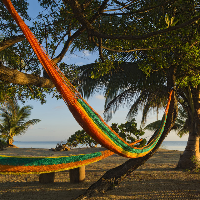 """Hammocks by the beach at sunrise"" stock image"