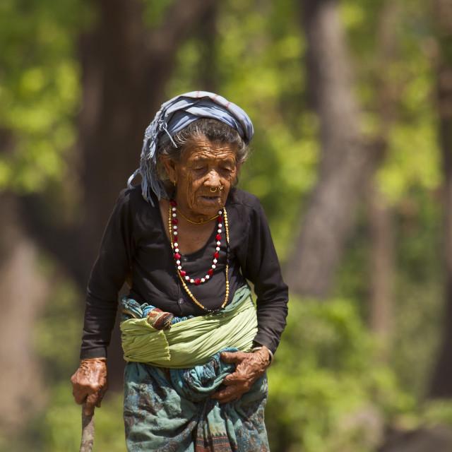 """Very old tharu woman in Bardia, Nepal"" stock image"