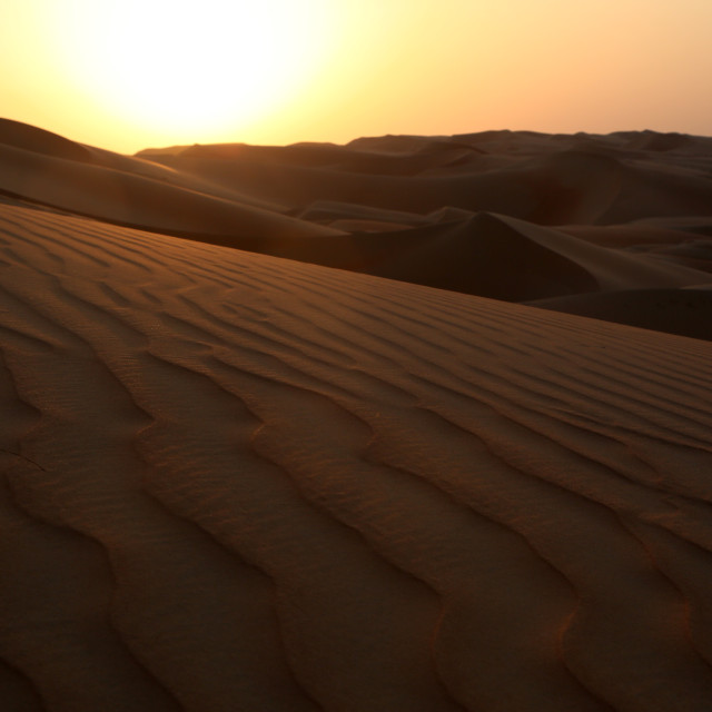 """Sunset in the desert"" stock image"