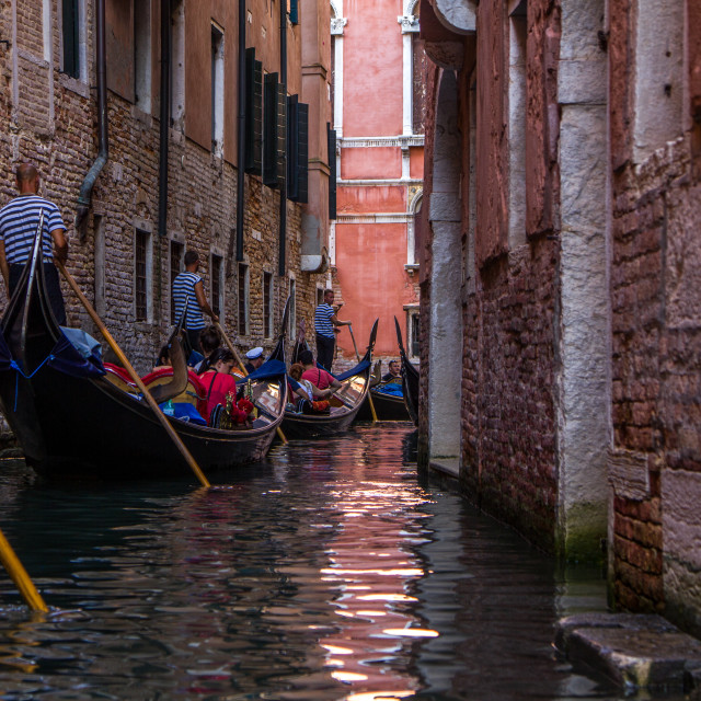 """Venice Gondolas"" stock image"