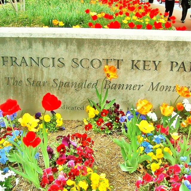 """Francis Scott Kev"" stock image"