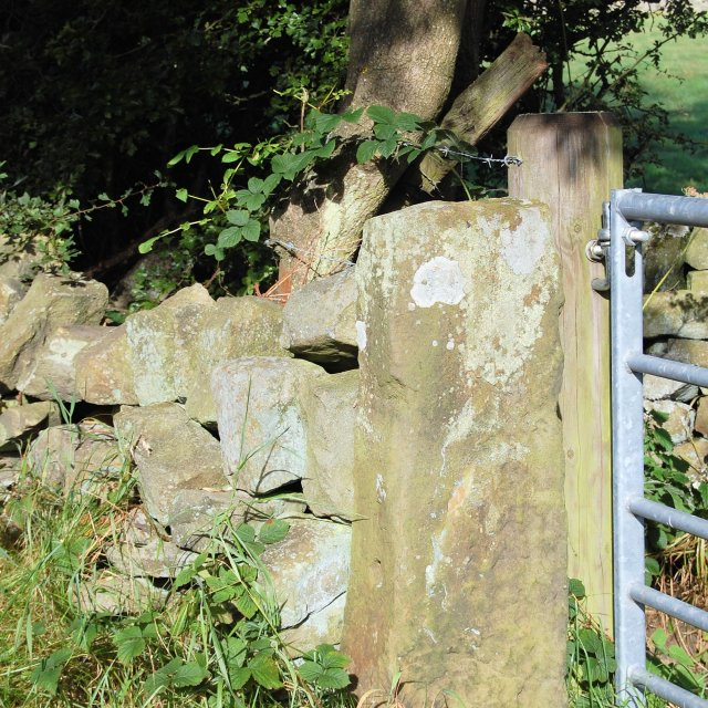 """Stone gatepost with lichen - Derbyshire"" stock image"