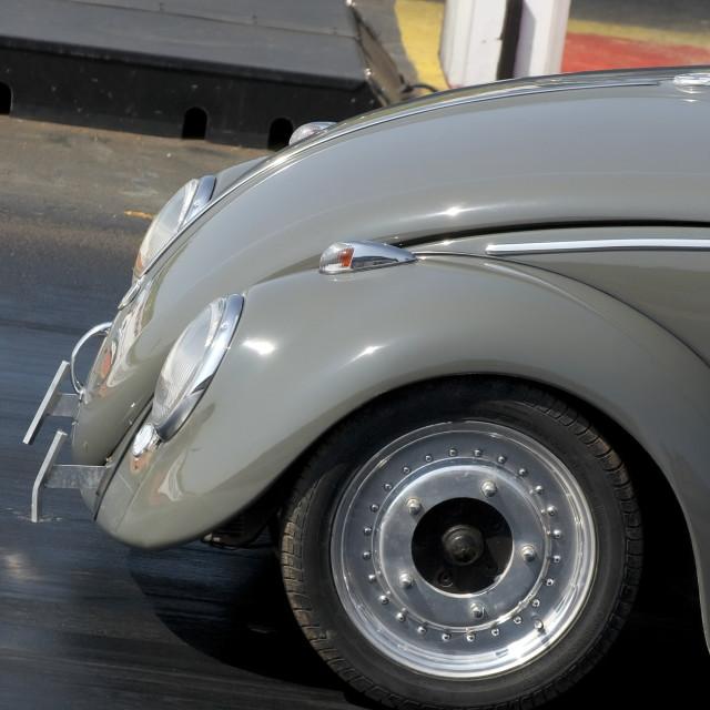 """""""beetle hood"""" stock image"""