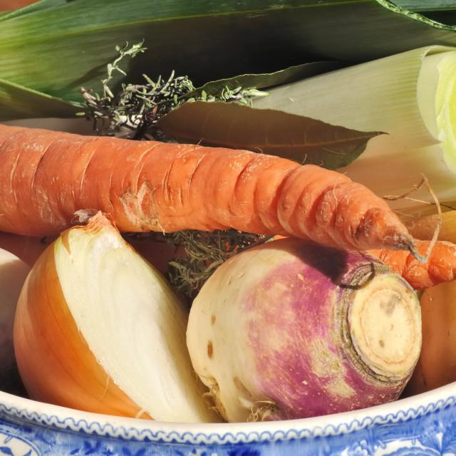"""season vegetables for soup"" stock image"