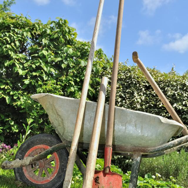 """gardening tools"" stock image"