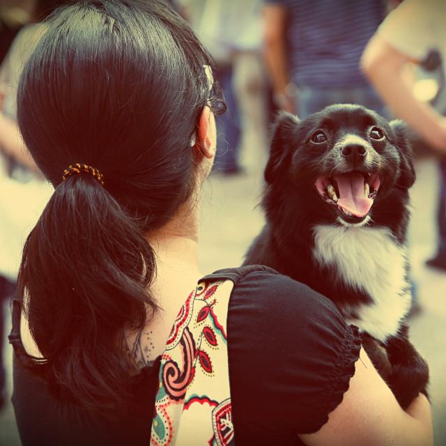 """A smiling dog"" stock image"