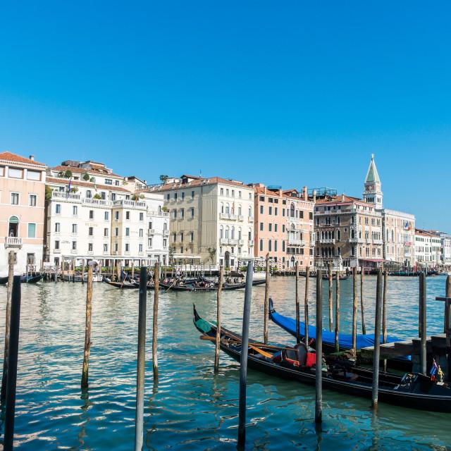 """Gondolas in Canal Grande, Venice, Italy"" stock image"