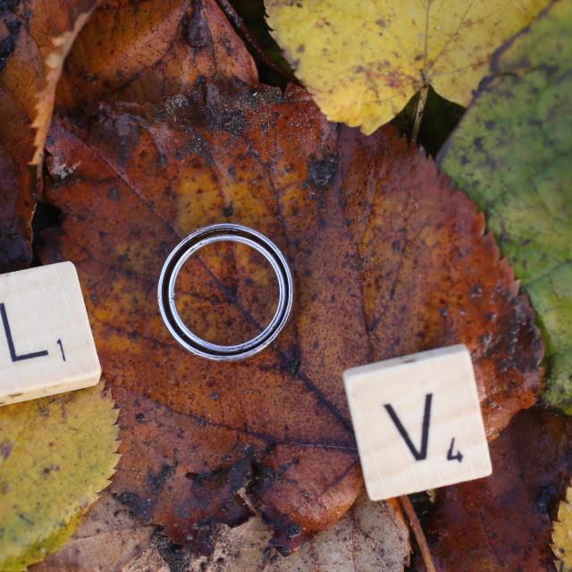 """L.O.V.E"" stock image"