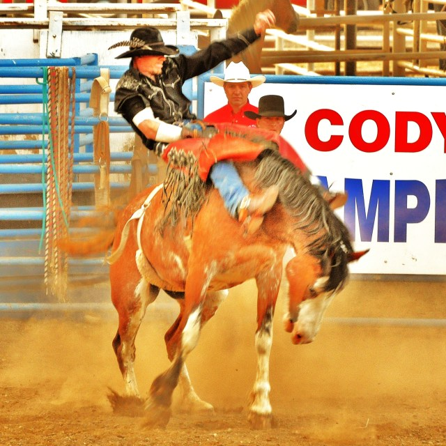 """""""Rodeo"""" stock image"""