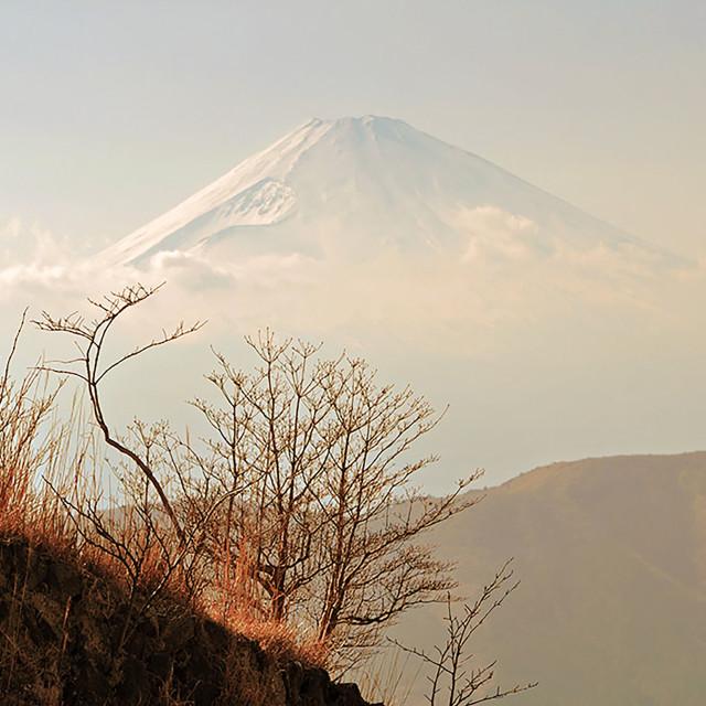 """""""Fuji"""" stock image"""