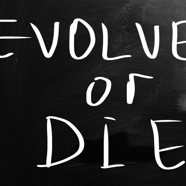 """Evolve or die"" stock image"