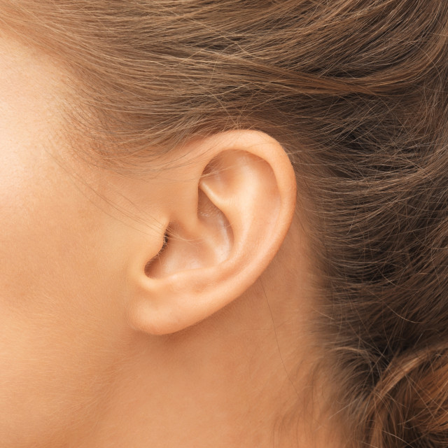 """""""close up of woman's ear"""" stock image"""