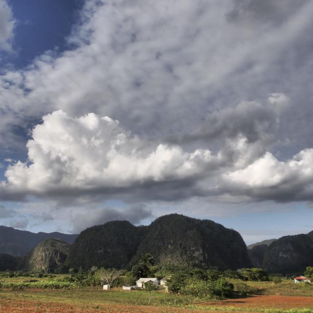 """Mogotes, Pinar del Río Province"" stock image"