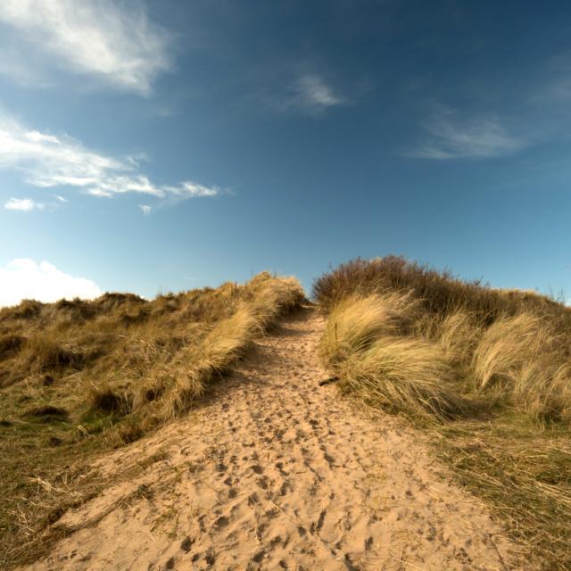 """Sand Dune Climbing"" stock image"