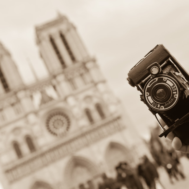 """""""France, Paris, young man taking photograph, Cathedral Notre-Dame"""" stock image"""