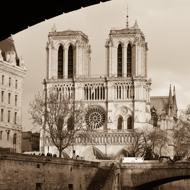 """""""Notre-Dame Cathedral - Paris"""" stock image"""