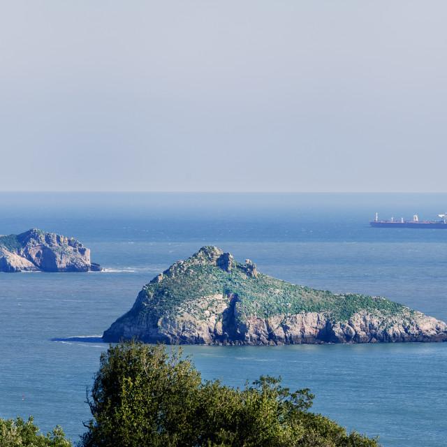 """Thatcher Rock and The Orestone - Torquay"" stock image"