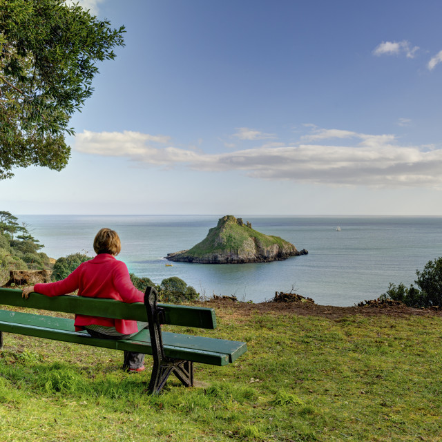 """Relaxing at Thatcher Rock - Torquay"" stock image"