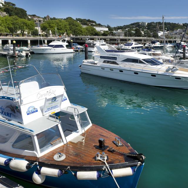 """Torquay Marina"" stock image"