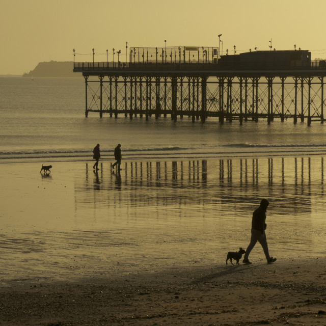 """Dog walkers on a winter morning, Paignton Beach, Devon"" stock image"