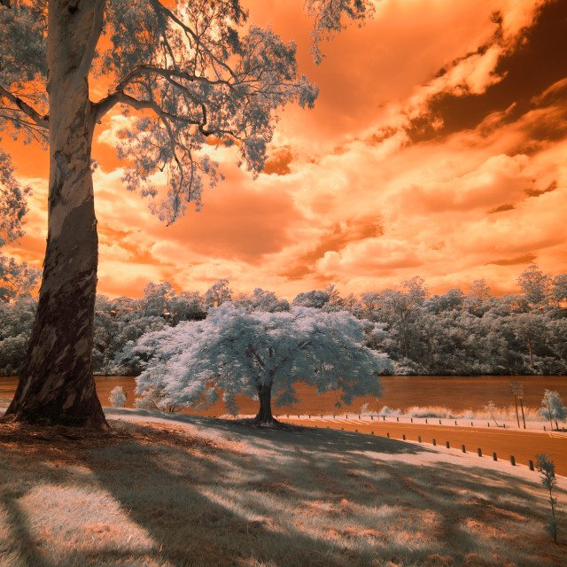 """Brisbane River in infrared"" stock image"