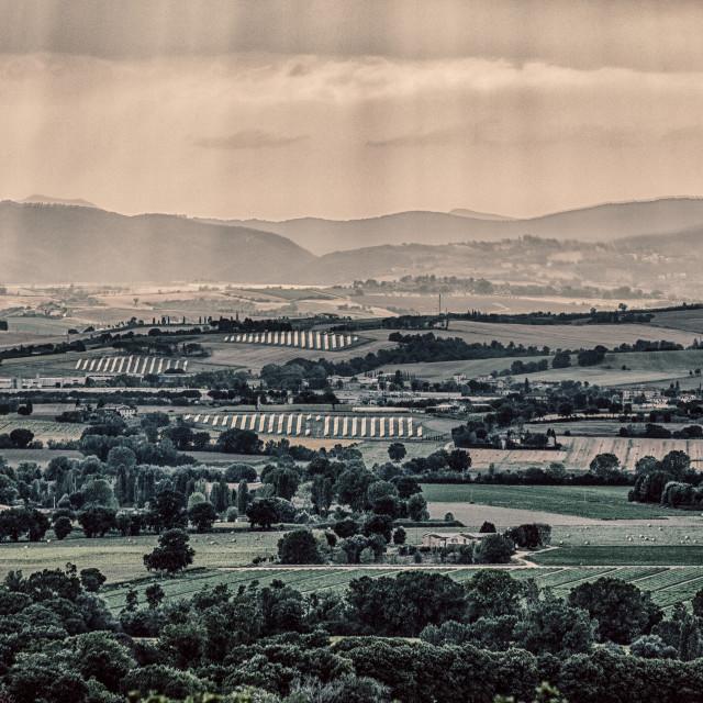 """""""Umbrian Landscape"""" stock image"""