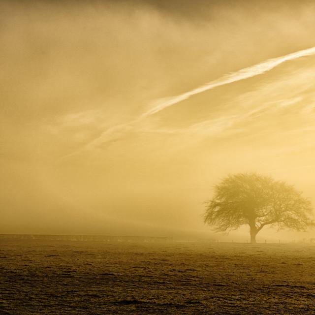 """Sunrise over Scotland"" stock image"
