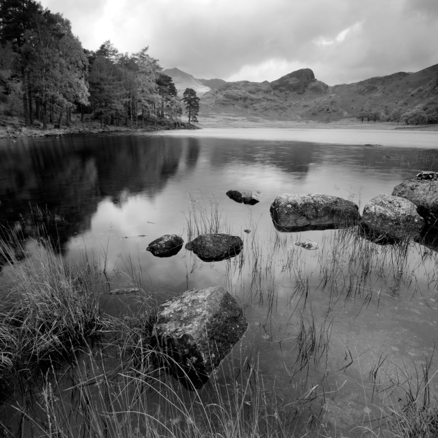 """Blea Tarn Black and White"" stock image"