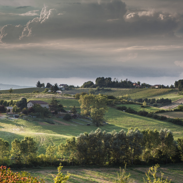 """""""Tuscan Landscape at Magic Hour"""" stock image"""