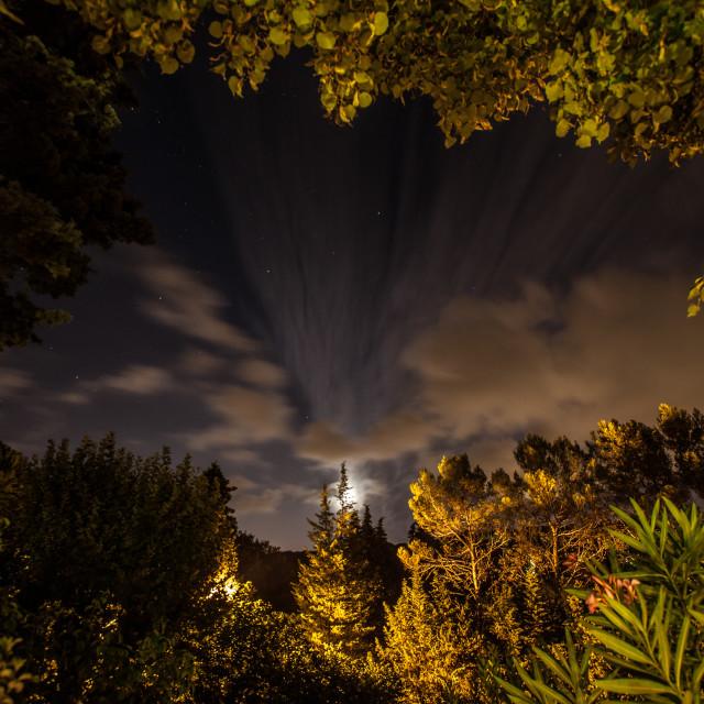 """Provençale Moonlight Garden"" stock image"