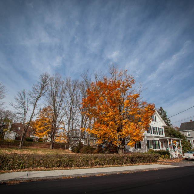 """""""Fall in New England"""" stock image"""