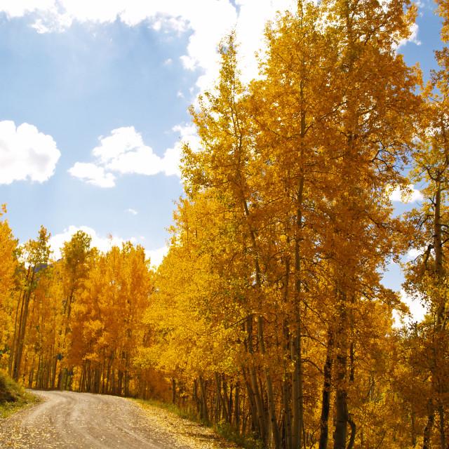 """""""Owl Creek Pass"""" stock image"""